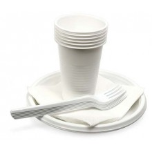 Набор посуды одноразовой «Шашлычок», 6 персон, 24 предмета, белый